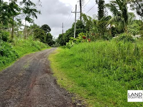 Bargain Priced Land In Paradise : Pahoa : Hawaii County : Hawaii