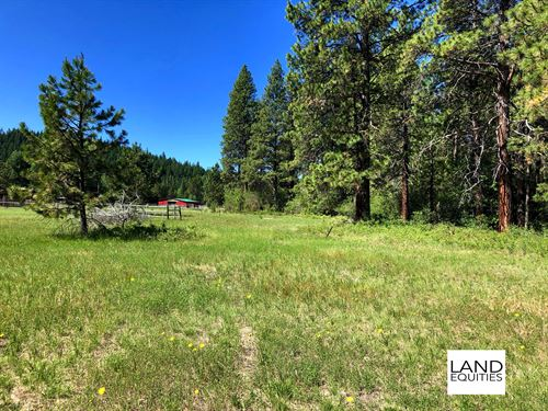 2 Beautiful Lots In Rocky Point : Rocky Point : Klamath County : Oregon