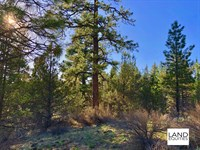 Beautiful Property, Great Location : Bonanza : Klamath County : Oregon