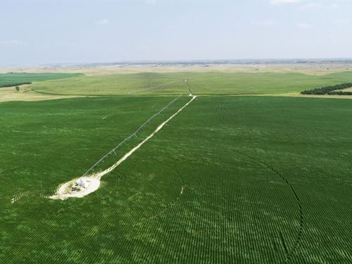 Brown County Pivots Auction : Johnstown : Brown County : Nebraska