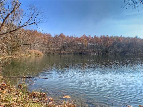 Land For Sale, Pike Co, IN Recrea : Petersburg : Pike County : Indiana