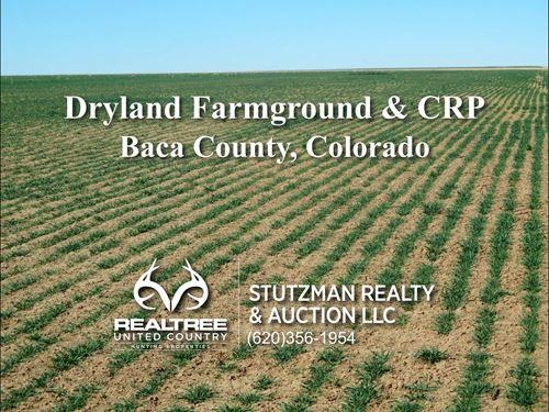 Dryland Farmground & Crp Baca : Walsh : Baca County : Colorado