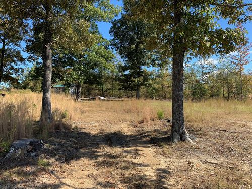 31 Acres For Sale in Southern TN : Iron City : Wayne County : Tennessee