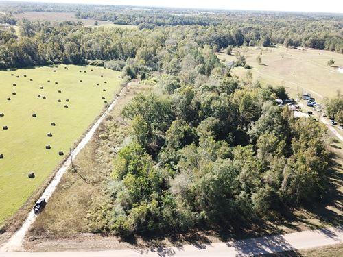 10.8 Acres Land Slocomb, AL Geneva : Slocomb : Geneva County : Alabama