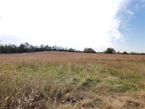 76 Acres Hwy 43 North of Joplin MO : Webb City : Jasper County : Missouri