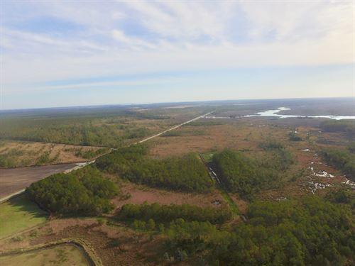 Recreational Property Hyde Co, NC : Scranton : Hyde County : North Carolina