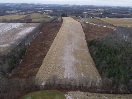 Farmland With 3/4 Tillable Crops : Warren : Herkimer County : New York