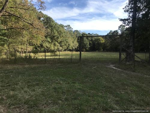 Beautiful Farm With Views : Sontag : Lawrence County : Mississippi