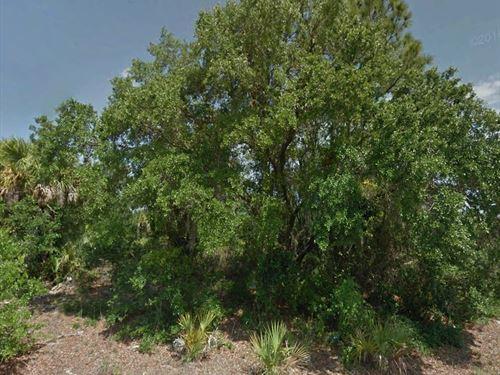 Beautiful Neighborhood, No 284 : North Port : Sarasota County : Florida