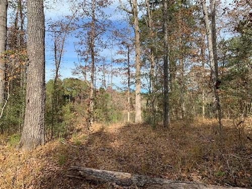Recreational/Timber Land And Good : Carthage : Leake County : Mississippi