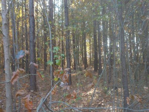 Borden Road : Robbins : Moore County : North Carolina