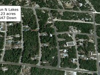 .23 Acre Lot Close to Lake : Lake Placid : Highlands County : Florida