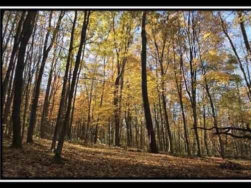 Raccoon Creek at Zaleski : McArthur : Vinton County : Ohio