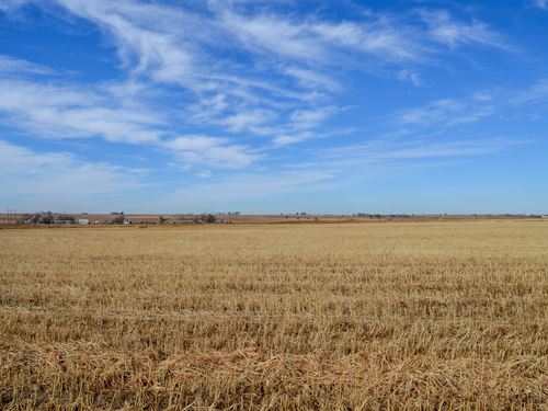195.93 Acres of Farm Land For Sale : Mc Clave : Bent County : Colorado
