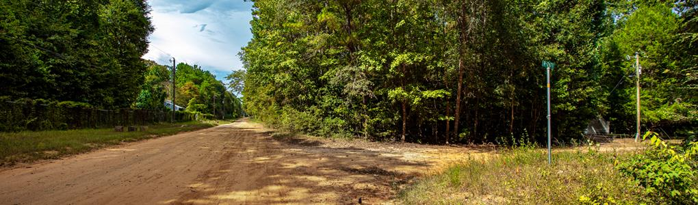 Wooded Corner Lot With Utilities : Cleveland : Liberty County : Texas
