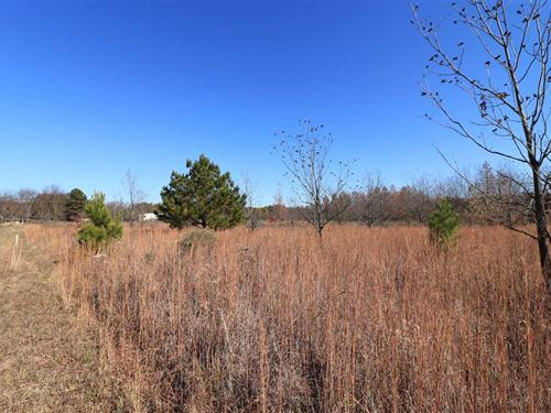 35 Acres Near Des Arc-Ideal fo : Des Arc : Prairie County : Arkansas
