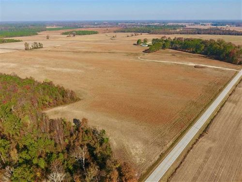38.21 Acres of Farm Land For Sale : Dover : Craven County : North Carolina