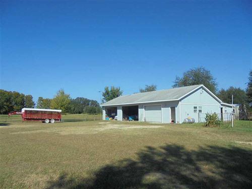 36 Acres in Live Oak, FL : Live Oak : Suwannee County : Florida