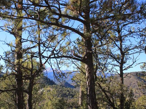 Sierra Blanca Mountain View Lot : Ruidoso : Lincoln County : New Mexico