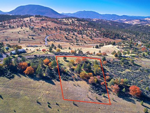 Privacy And Views 2.5 Acre Lot : Tiger Street : Siskiyou County : California