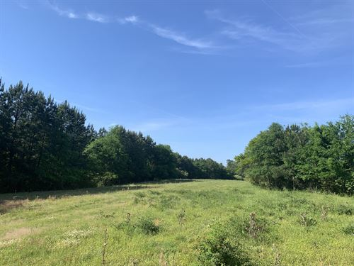 218+/- Acre Autauga Creek Farm : Verbena : Autauga County : Alabama