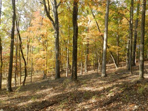 Oaky Woods Ridge Farm : Milledgeville : Baldwin County : Georgia