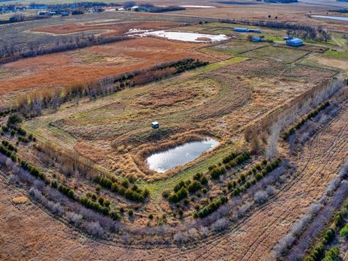 79.60 Acres Bon Homme County : Tyndall : Bon Homme County : South Dakota