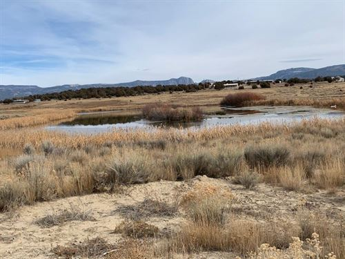 Great Mini Ranch Ponds Water Rights : Tierra Amarilla : Rio Arriba County : New Mexico