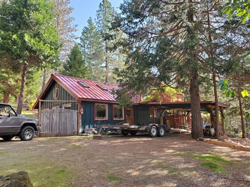 Cabin Woods Acreage Agness, Oregon : Agness : Curry County : Oregon