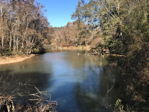 East Fork Amite River Paradise : Liberty : Amite County : Mississippi