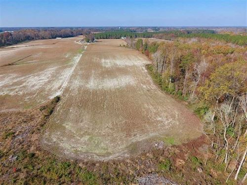 17.98 Acres of Farm And Hunting LA : Dover : Craven County : North Carolina