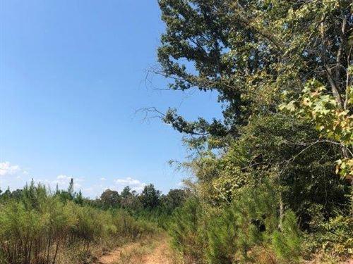 Hilltop Tract : Sparta : Hancock County : Georgia