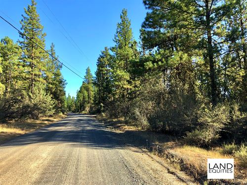 Beautiful Treed Lot With Power : Bonanza : Klamath County : Oregon