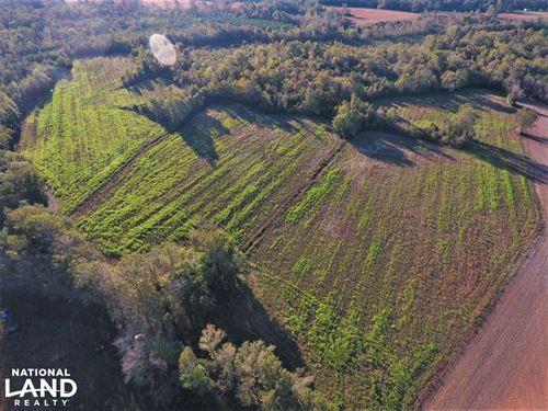 Gardner Farm : Trenton : Jones County : North Carolina