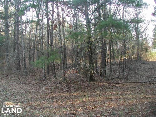 13 Acres Pine Hill Ln : Terry : Hinds County : Mississippi