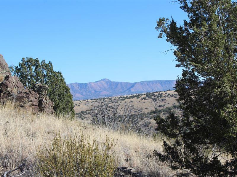 Land That Borders Public Land : Seligman : Yavapai County : Arizona