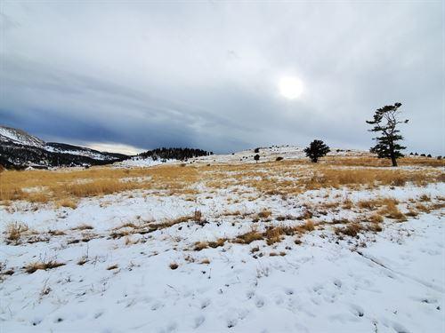 Land in Cripple Creek Near Town : Cripple Creek : Teller County : Colorado