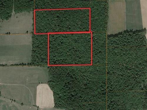 Hunting Property : Hornby : Orange County : New York