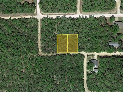 Wooded Land Near The Lake, .44 Acre : Diamond : Boone County : Arkansas