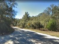 .25 Acre in Putnam County, FL : Interlachen : Putnam County : Florida