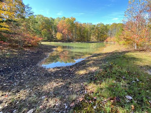27.1+/- Acres of Nice Usable Land : Altamont : Grundy County : Tennessee