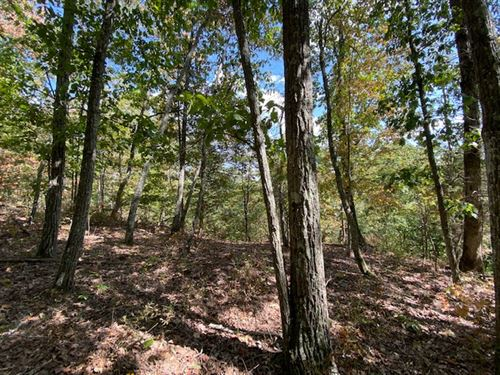 2.98+/- Acres Wooded Bluff Tract : South Pittsburg : Marion County : Tennessee