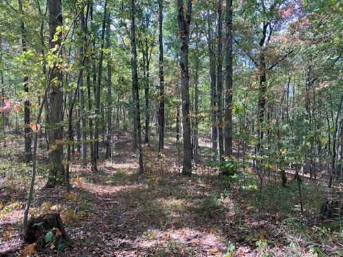 3.75+/- Acres Wooded Bluff Tract : South Pittsburg : Marion County : Tennessee