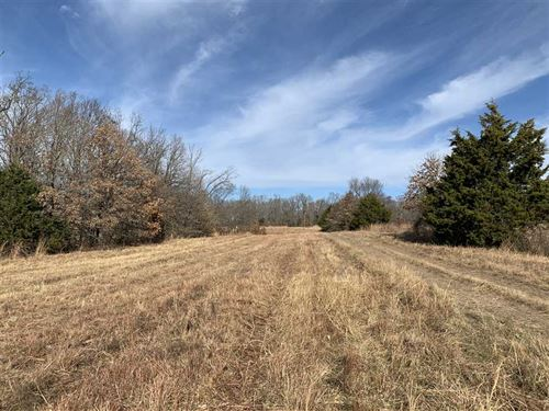 Secluded 147.75 Acres With Excelle : Camdenton : Camden County : Missouri