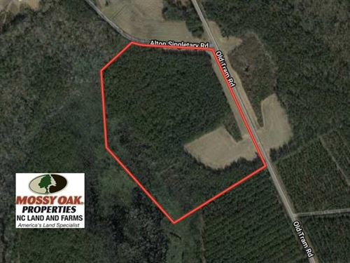 40 Acres of Farm And Timber Land : Whiteville : Columbus County : North Carolina