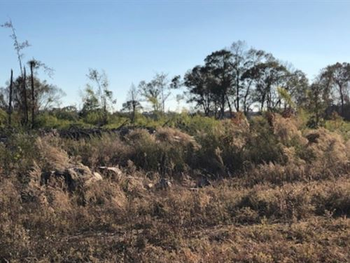 115 Acres In Lincoln County In Bogu : Bogue Chitto : Lincoln County : Mississippi