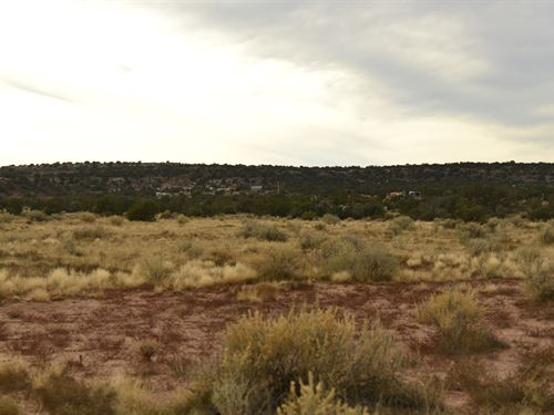 Open Range Land in Snowflake, AZ : Snowflake : Navajo County : Arizona