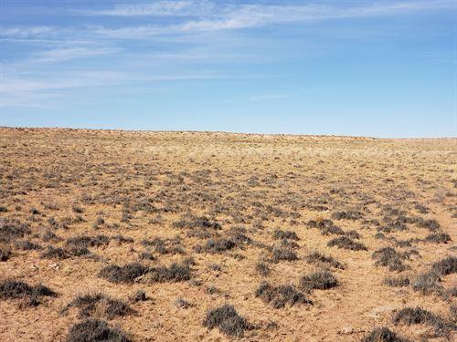 1 Acre of Beautiful Landscape : Arizona : Apache County : Arizona
