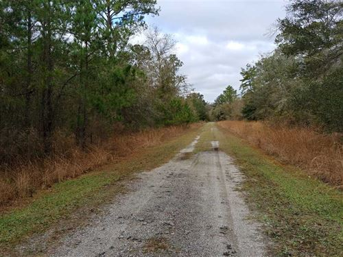 2 Acres of Residential Land in Fol : Folkston : Charlton County : Georgia