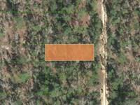 .44 Acre in Putnam County, FL : Interlachen : Putnam County : Florida